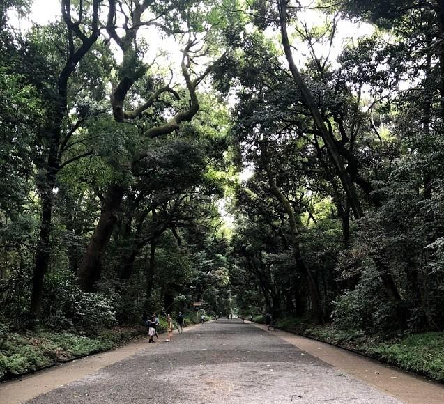 meiji park